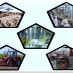 PPCM e seus desafios na Agroindústria
